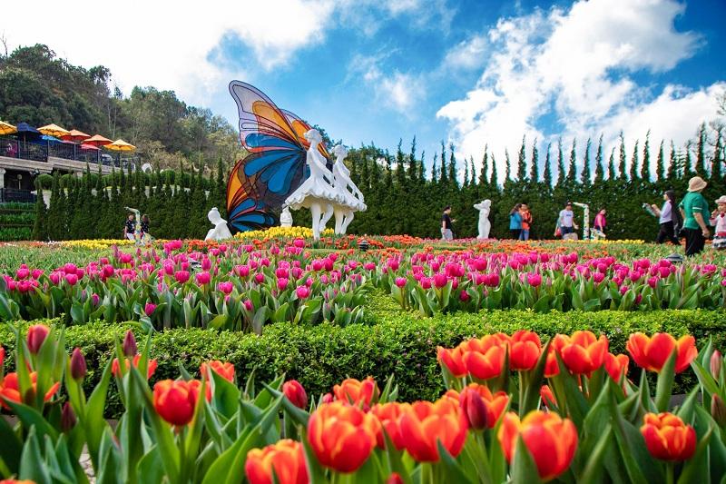 Du khách thỏa sức Check In tại vườn hoa Le Jardin D'Amour Bà Nà Hills