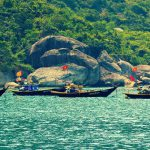 Du lịch Cù Lao Chàm, đi tự túc hay đi Tour?