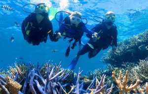 không biết bơi có lặn ngắm san hô được không