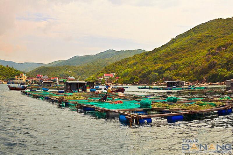 Tour Nha Trang từ Đà Nẵng 3 ngày 2 đêm
