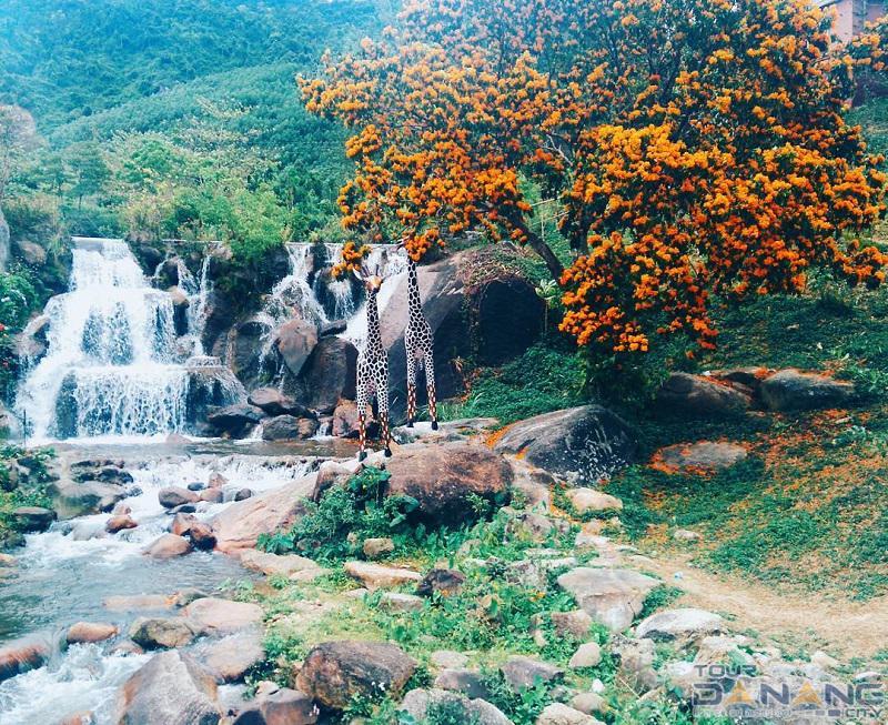 du lịch sinh thái tại Đà Nẵng